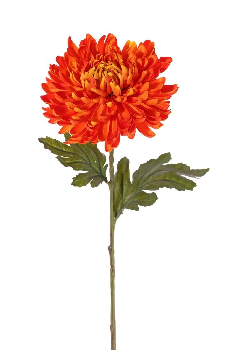 Chrysantheme, Ø 14 cm, H. 5 cm, 2 Blätter, (Polyester), 65 cm