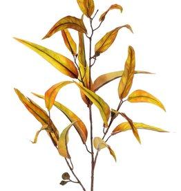 """Rama de eucalipto """"Ruby"""", 22 hojas, 5 frutas, 100 cm"""