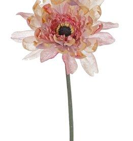 Gerbera, Ø 12 cm, H. 4 cm, 64 cm
