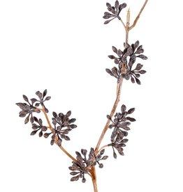 Eucalyptusvruchttak, 2x vertakt, 19 trosjes vruchten (gepoederd), geen blad, 60cm
