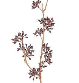 Rama de eucalipto, 19 racimos de frutas, 60 cm
