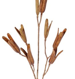 Lily seed branch, 8 seed pods, (5x L / 3x Med.), plastic, 79 cm