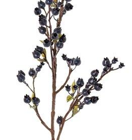 Rama de baya (Vaccinium), 67 bayas, 14 hojas, 60 cm
