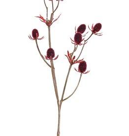 Distelzweig (Eryngium), 2x verzweigt, 9 Disteln, (ca.1,5 cm), 43 cm