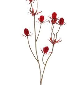 Thistle spray (Eryngium), 9 thistles (ca.1,5 cm), 43 cm