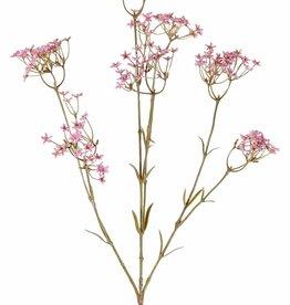 Gypsophila, 9 flores (4x L / 3x M /2x S), 70 cm