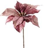 Top Art Poinsettia, Christstern, Weihnachtsstern 'Glamour', 1 Blume (Ø 23 cm, H. 5 cm), (Samt & Polyester) mit goldenem Blumenherz, 55 cm
