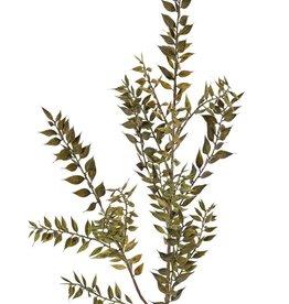 Top Art Ruscus, 460 hojas, 95 cm