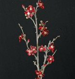 Frosted Quince Blossom, 91cm
