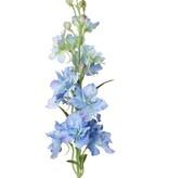 Delphinium, 12 flrs., 8 bud, 3 lvs, 60cm
