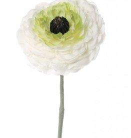 "Ranunculus ""little joy"", 1 flor, flocked rama, 36cm, Ø 8cm"