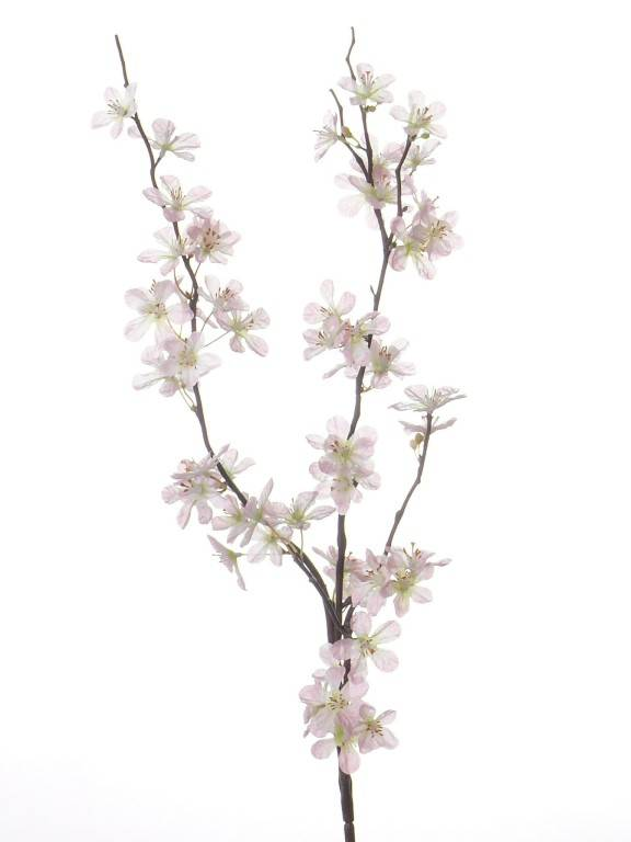 Appelbloesemtak 84cm