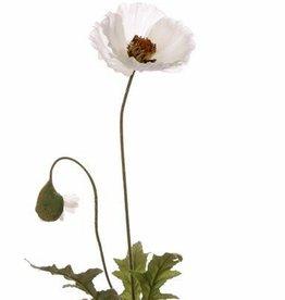Poppyflower 65cm