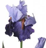 Iris spray de luxe x2 1flr & 1 bud & 2 lvs 71cm