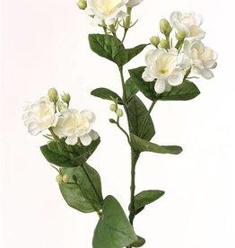 Jasmine branch (Jasminum), x9 flrs, 15 buds & 14 lvs, 60cm
