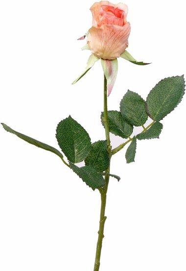 Rose Gina 35cm
