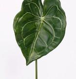 Anthurium-Blatt 67cm