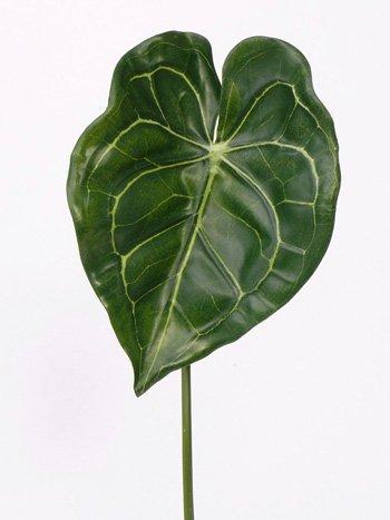 Anthurium blad 67cm