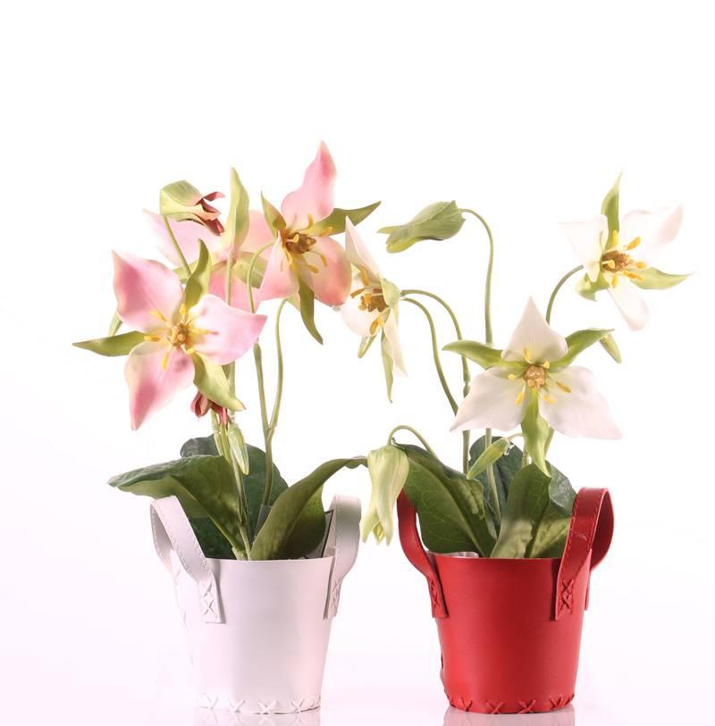 Boslelie (Trillium) met 3 bloemen 40cm