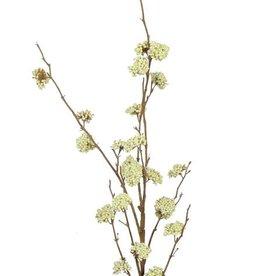 Callicarpa, 20 grupos de bayas, sin hojas, 99cm