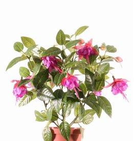 Fuchsia bush x12flrs & 108lvs, 30cm