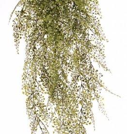 Maiden's Hair (Adianthum) hanger maxi plastic, x15 x195lvs, 85cm