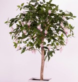 Fuchsia plant op stam x126blm & 666bld in pot, 90cm