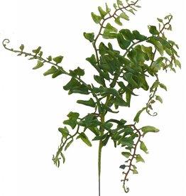 Filicopsida laguna , 7 ramas, 33cm, plastico