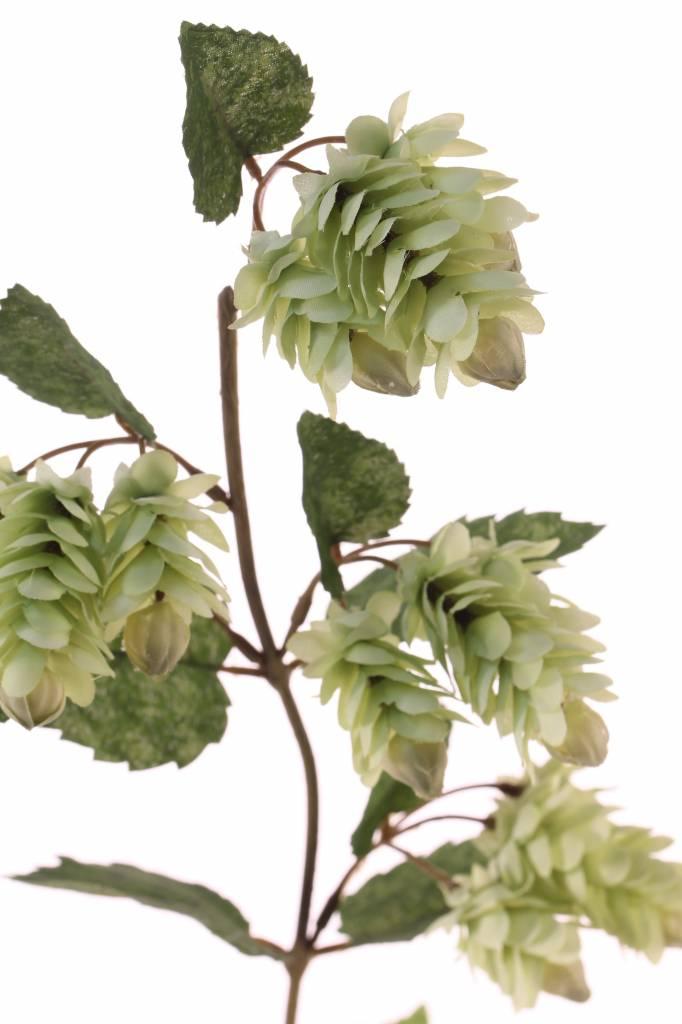 """hop branch """"de luxe"""" met 12 hop flowers, 12 lvs Ø 11cm/Ø 5,5cm/Ø 3,5cm, 68cm"""