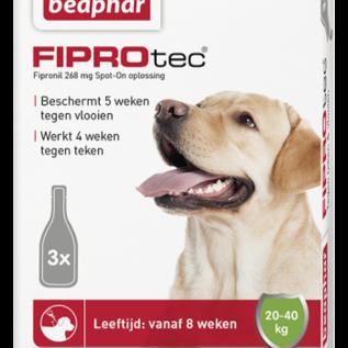 Beaphar Fiprotec Hond 20-40Kg 3Pip