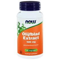 Olijfblad Extract 500 mg