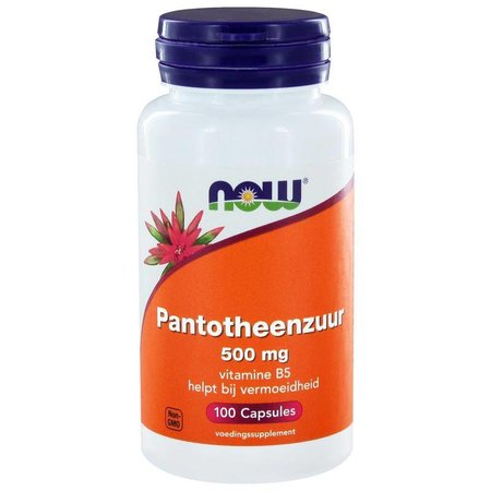 NOW NOW Pantotheenzuur 500 mg (B5)