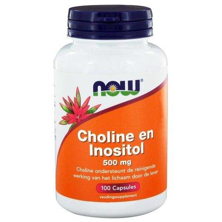 NOW Choline en inositol 500 mg