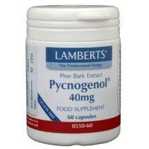 Pijnboombast extract (Pycnogenol 40 mg)