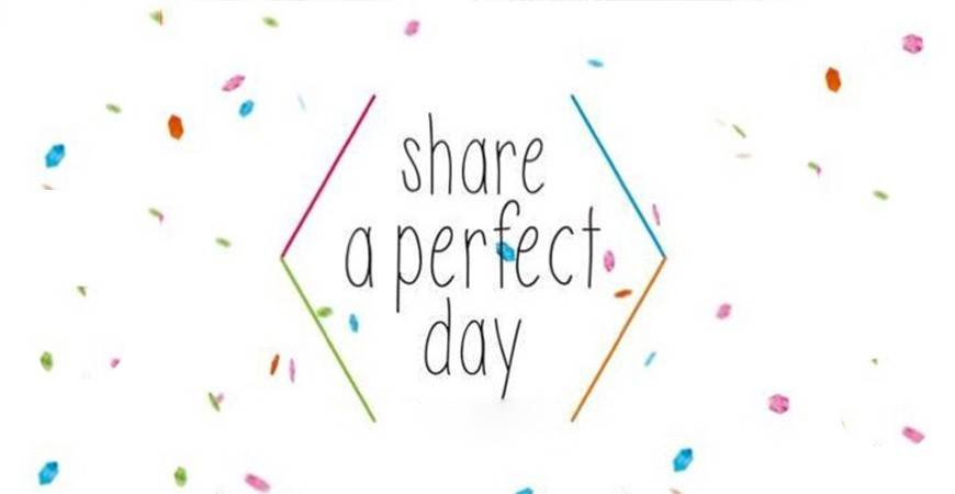 Max Pro X Share A Perfect Day
