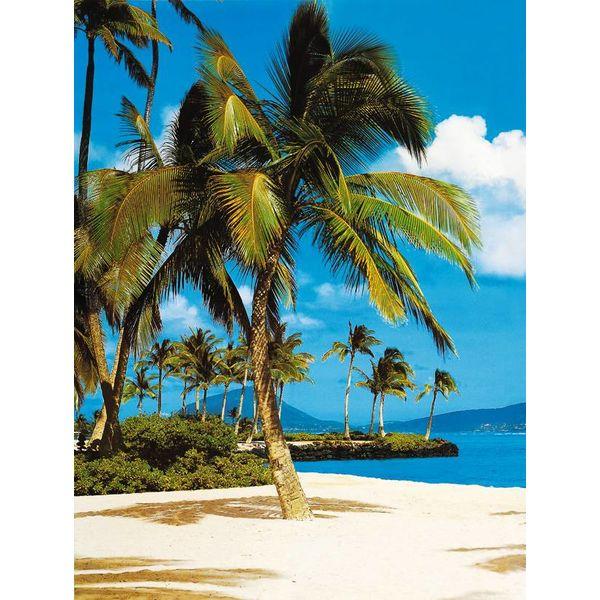 Hawaii Strand  - Fototapete 4-teilig 194 x 270 cm