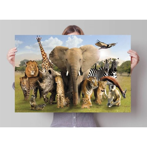 Poster Wilde Tiere