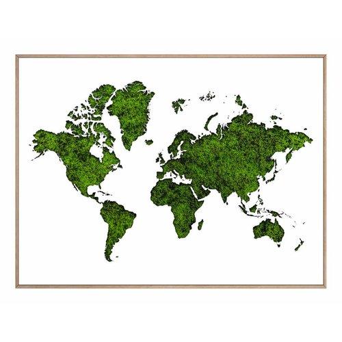 Wandbild Weltkarte aus Moos