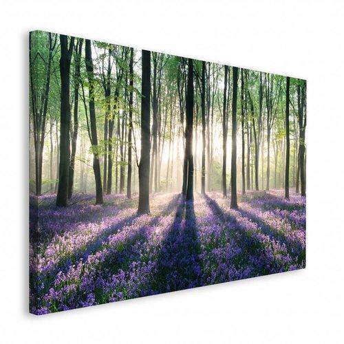 Wandbild Verzauberter Wald