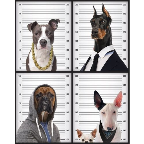Poster Criminal Dogs