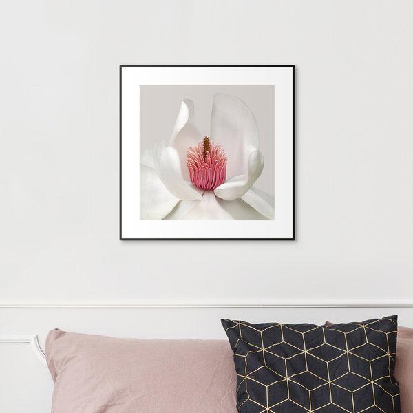 Weiße Blüte - Gerahmtes Bild 53 x 53 cm