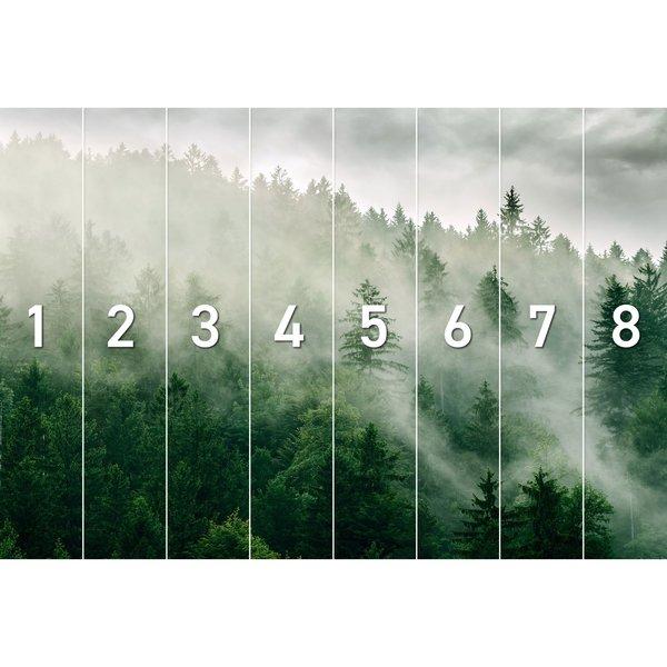 Nebelwald Wald - Nebelig - Gipfel - Natur - Fototapete Vlies 384 x 260 cm