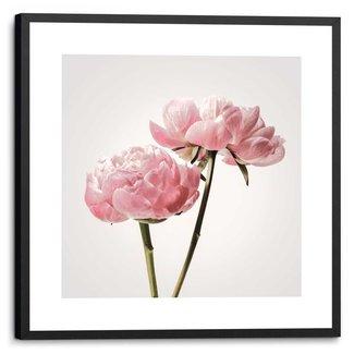 Gerahmtes Bild Pfingstrosenblüten
