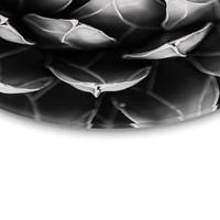 Schwarz & Weiß Pflanze Symmetrie - Glasbild Round Art Glas 50 cm