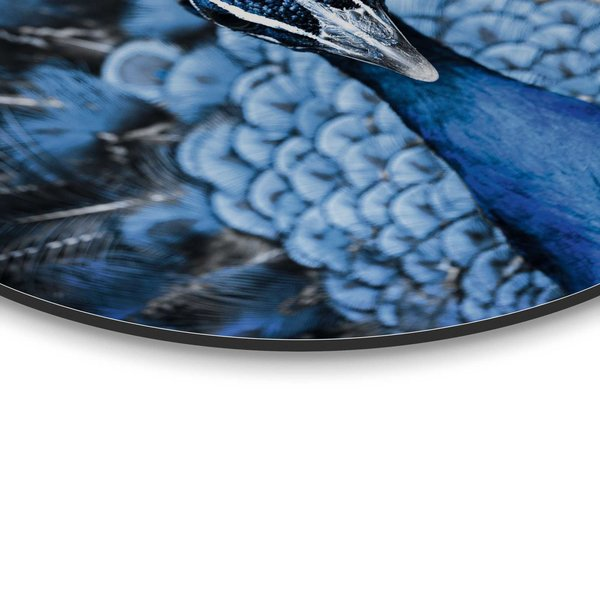 Pfau Tiermotiv - Vogel - Nahaufnahme - Modern - Wandbild Round Art MDF 50 cm