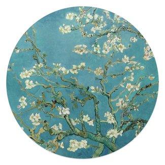 Glasbild Mandelblüte