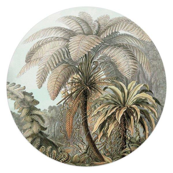 Palmenbaum Naturmotiv - Wald - Tropisch  - Glasbild Round Art Glas