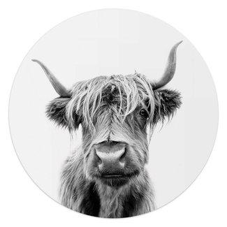 Glasbild Highlander Bulle