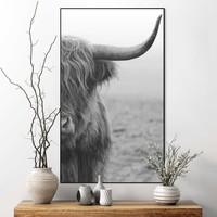 Highlander Bulle - Schottischer - Nahaufnahme - Gerahmtes Bild Art Frame MDF 70 x 118 cm