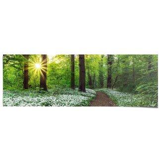 Poster Waldlichtung